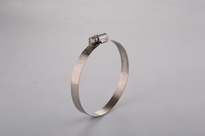 Small body, great use--Hose Clamp